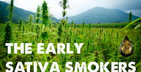 Early Sativa Smokers